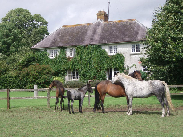 Photo of Joristown Lodge, Raharney, Co. Westmeath